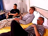 Three homos have a cock-rubbing session in a bedroom